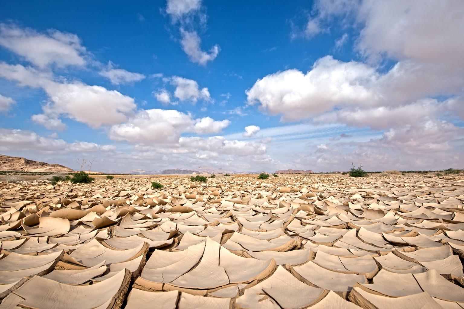 Wadi Rum desert after the rain