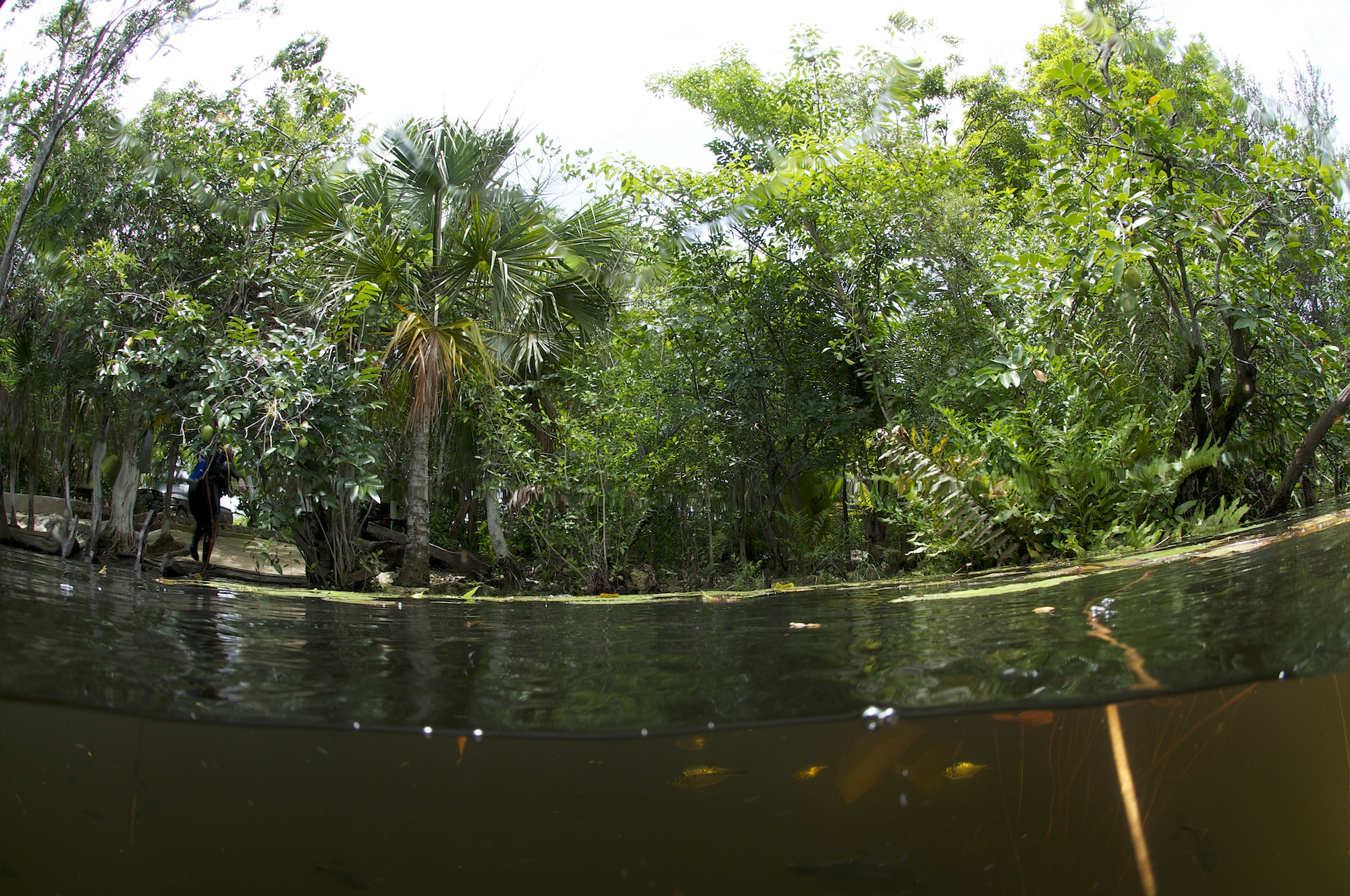 Car Wash Cenotes, Yucatan, Mexico