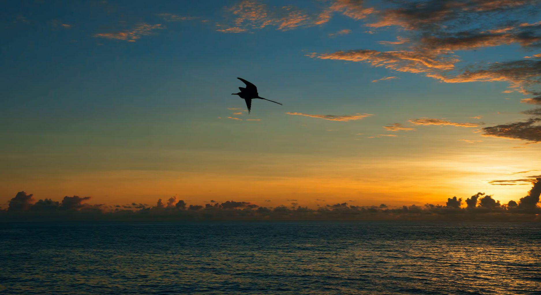 Galapagos Islands Sunset, Sonnenuntergang