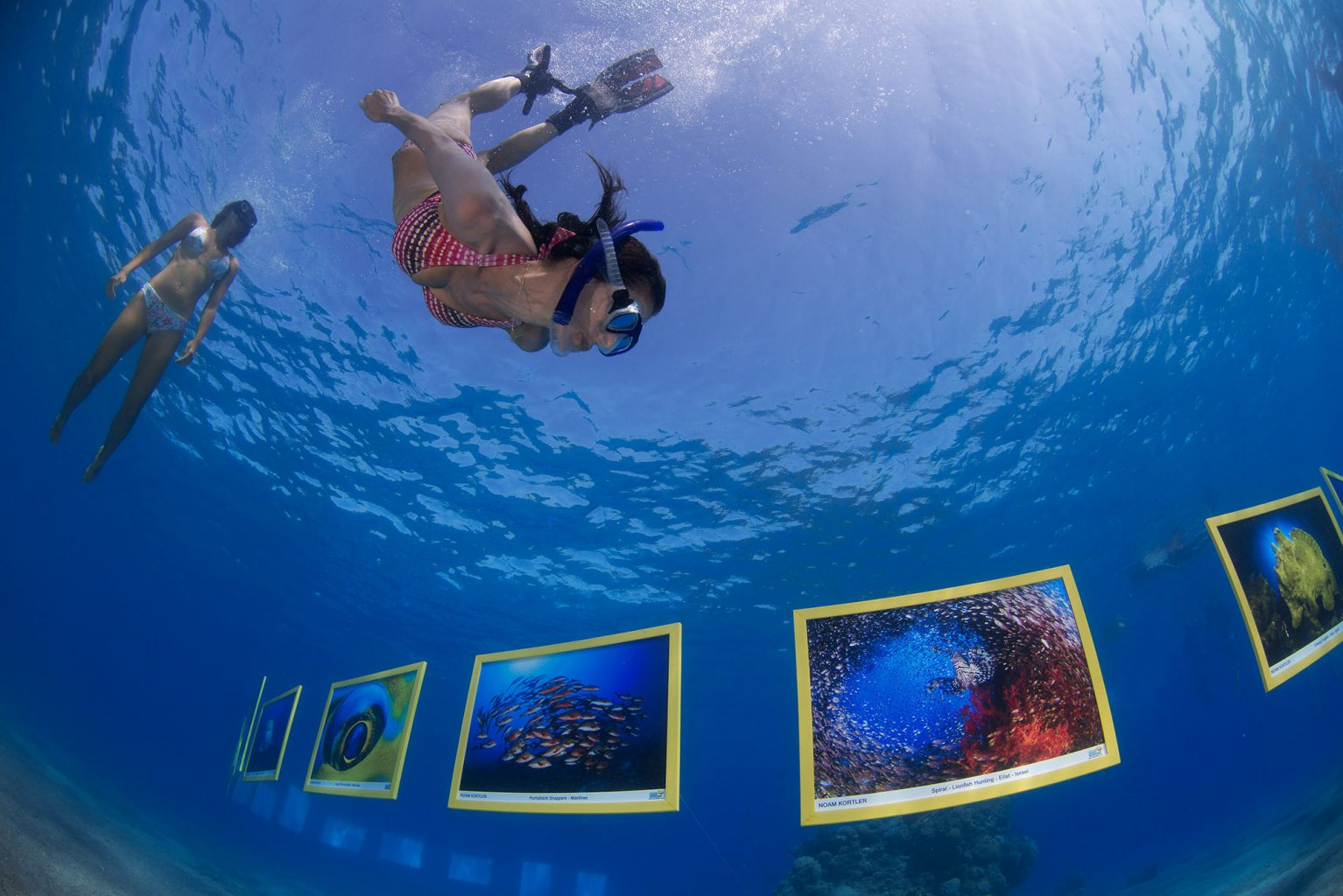 Treasures of the Sea Underwater Picture Exhibition, Red Sea - Eilat, Israel