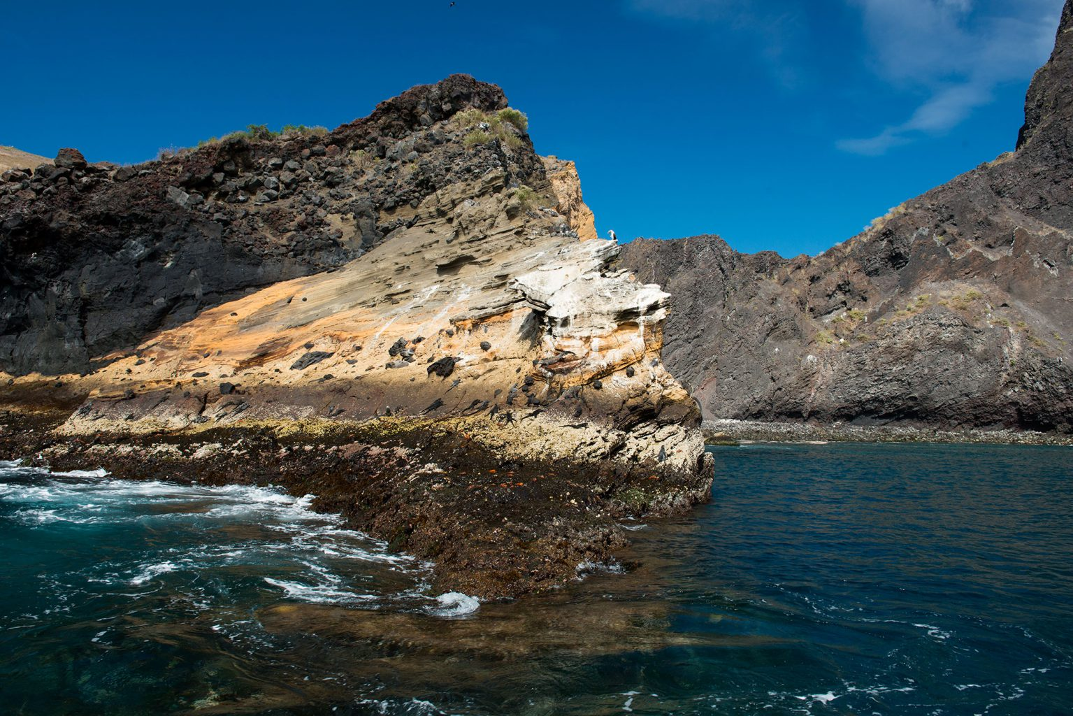 Galapagos Islands - Punta Vicente Roca