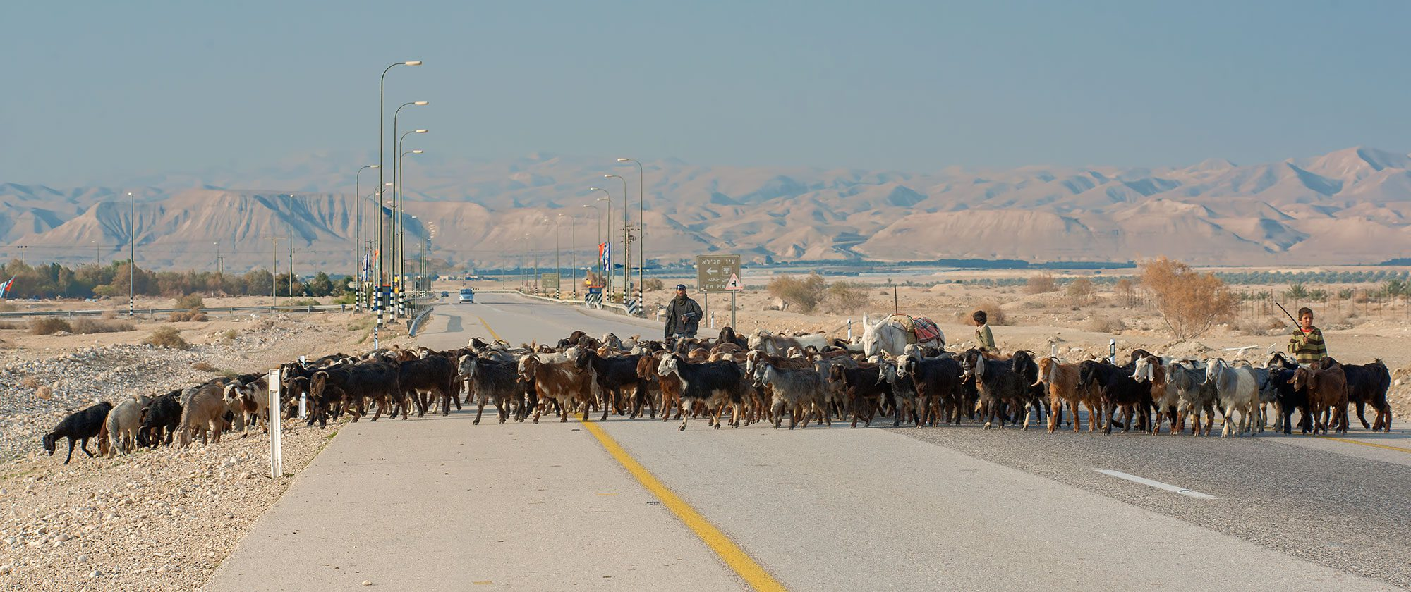Near Jericho, Israel