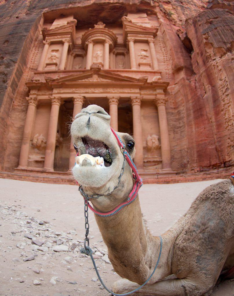 Ancient Nabatean City of Petra, Jordan - Jordanien