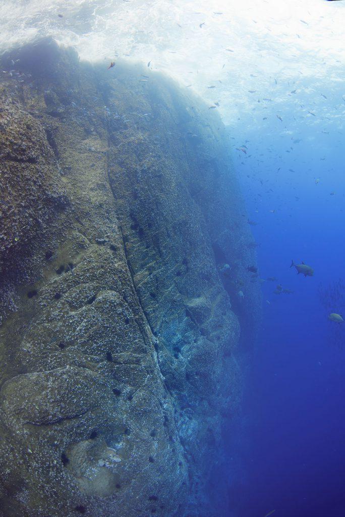 The Wall, Roca Partida Revillagigedo ( Socorro ) Islands, Mexico