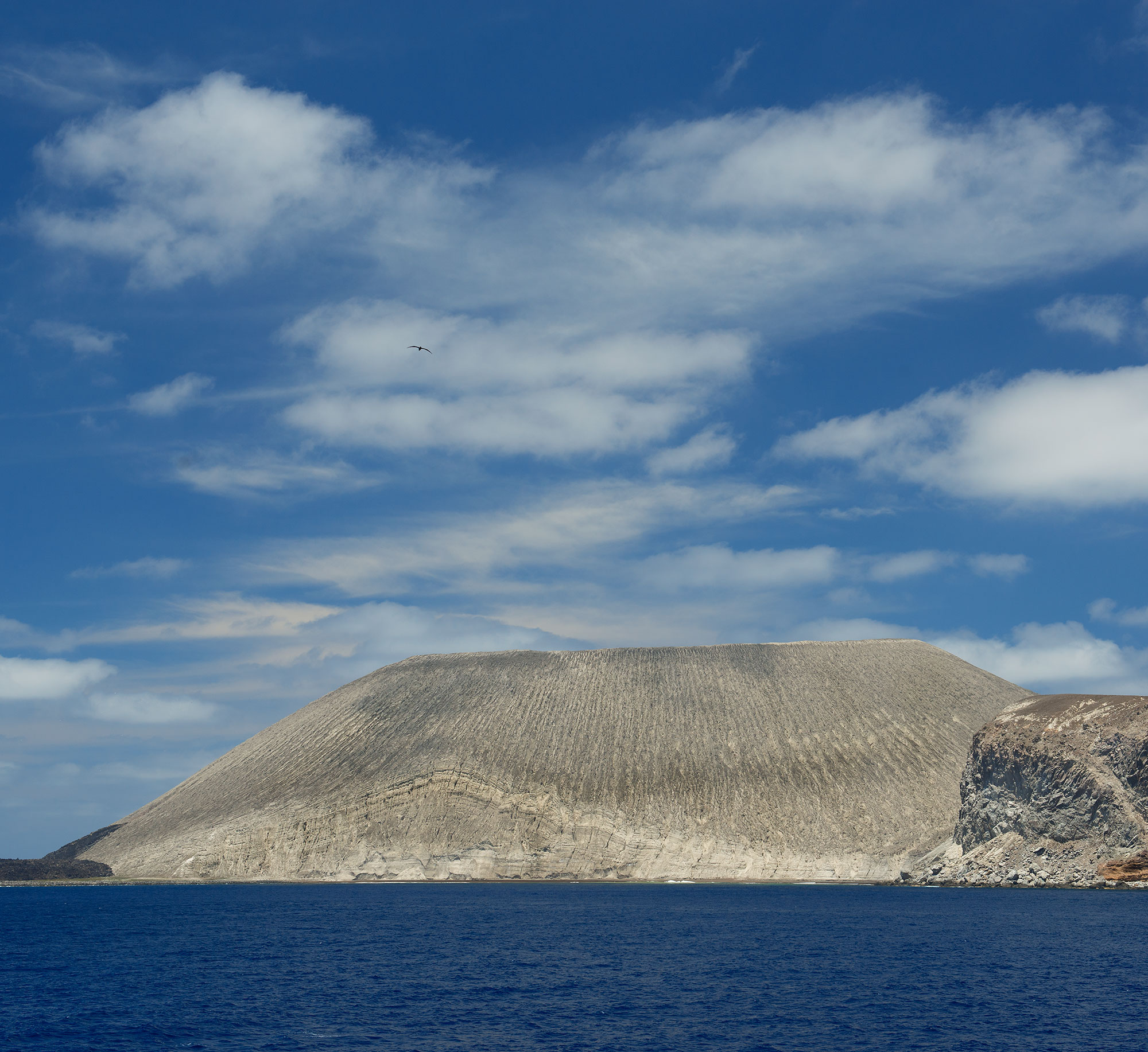 San Benedicto Revillagigedo ( Socorro ) Islands, Mexico