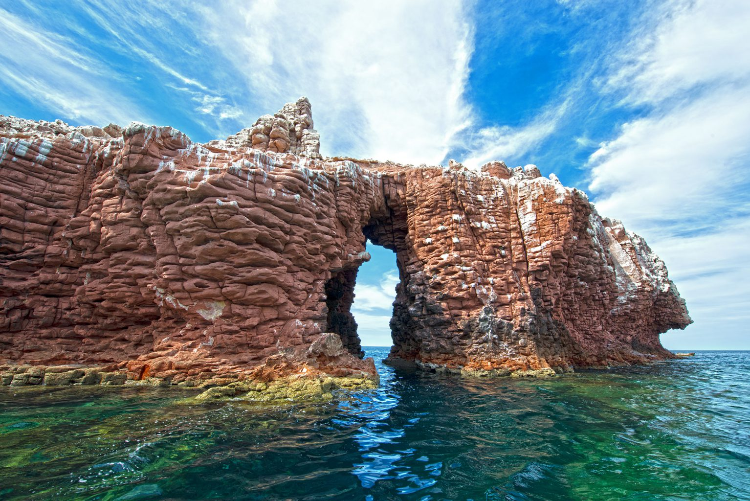 Los Islotes, Sea of Cortez, Mexico