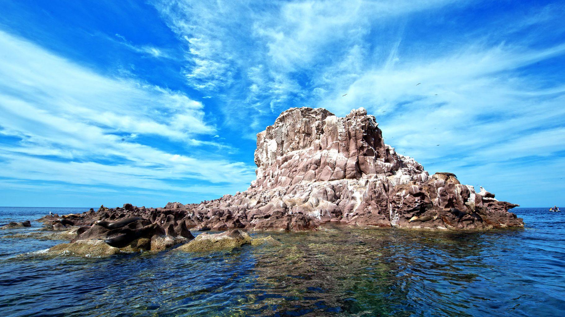 Los Islotes, Sea of Cortez, Mexico
