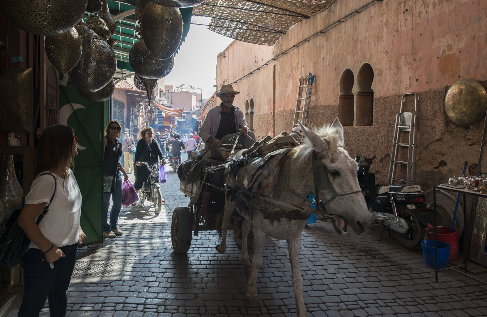 Donkey work force in Morocco