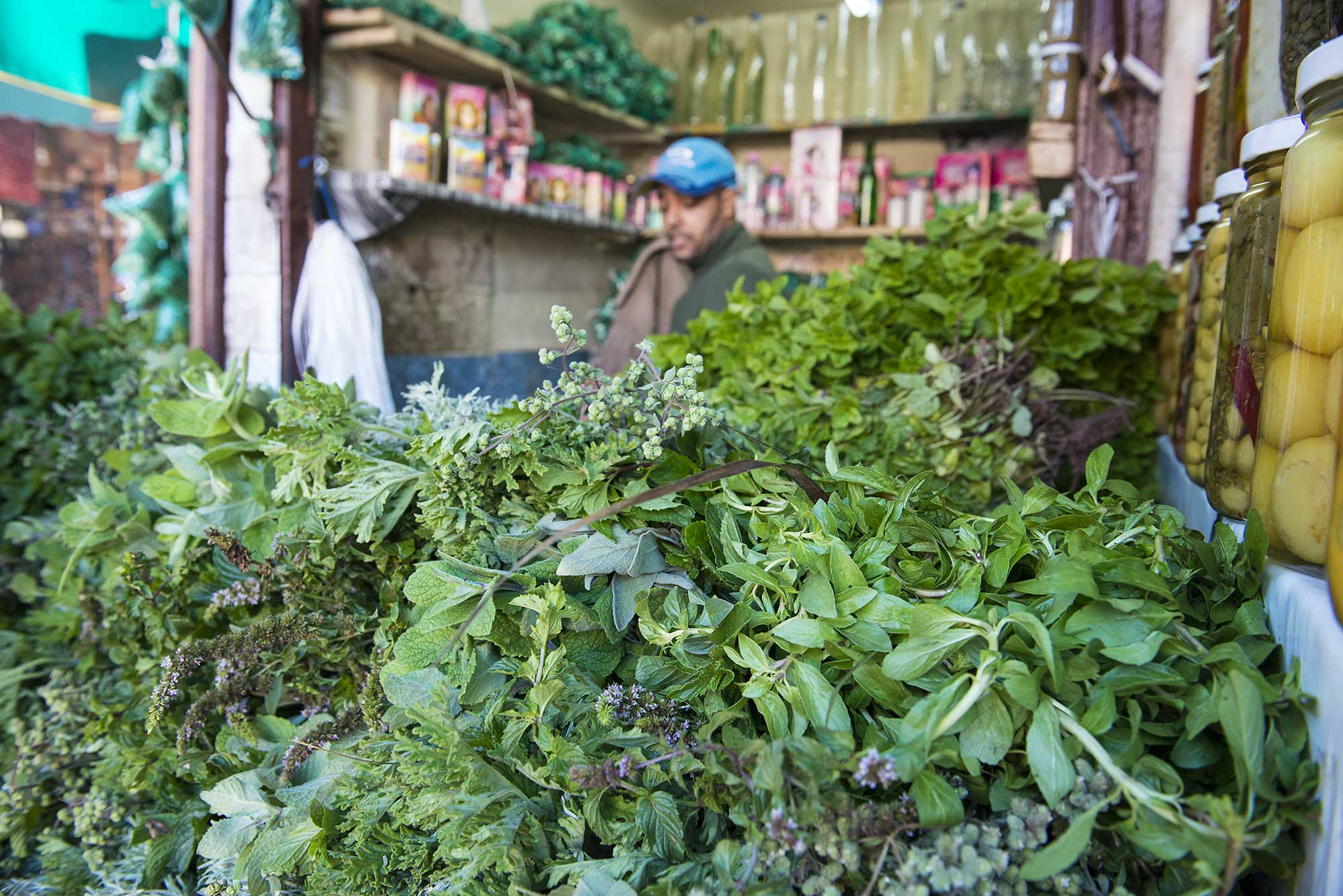 Herbs of Morocco