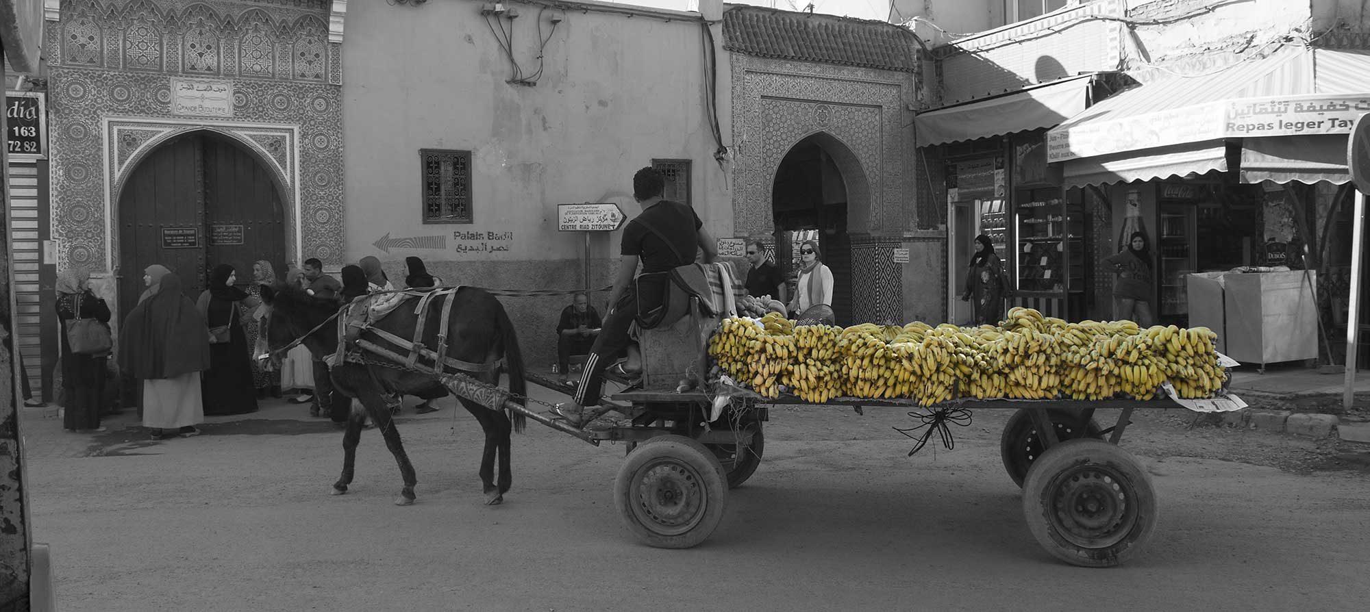 Banana Transporter Morocco