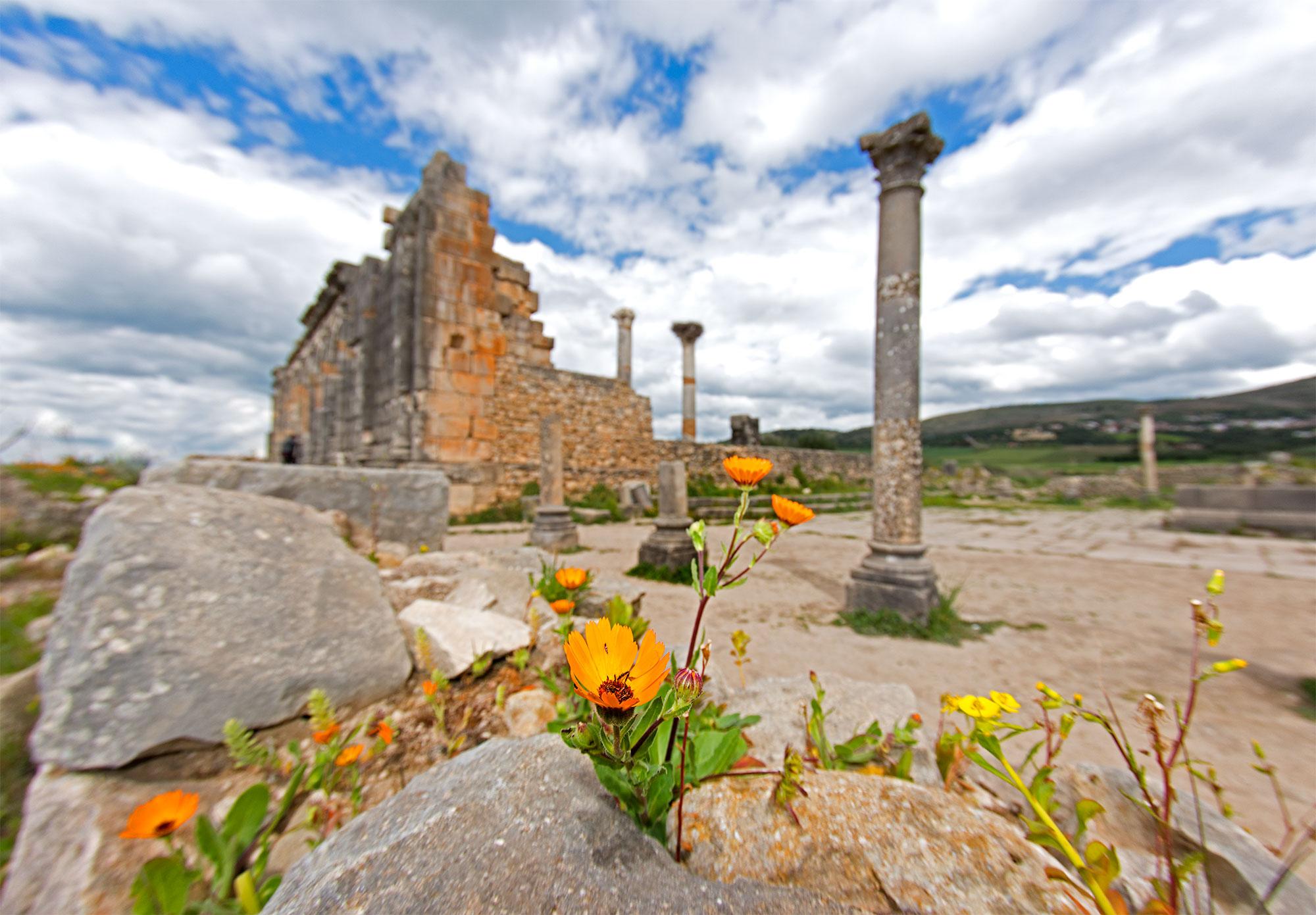 Volubilis Ancient Roman City Morocco