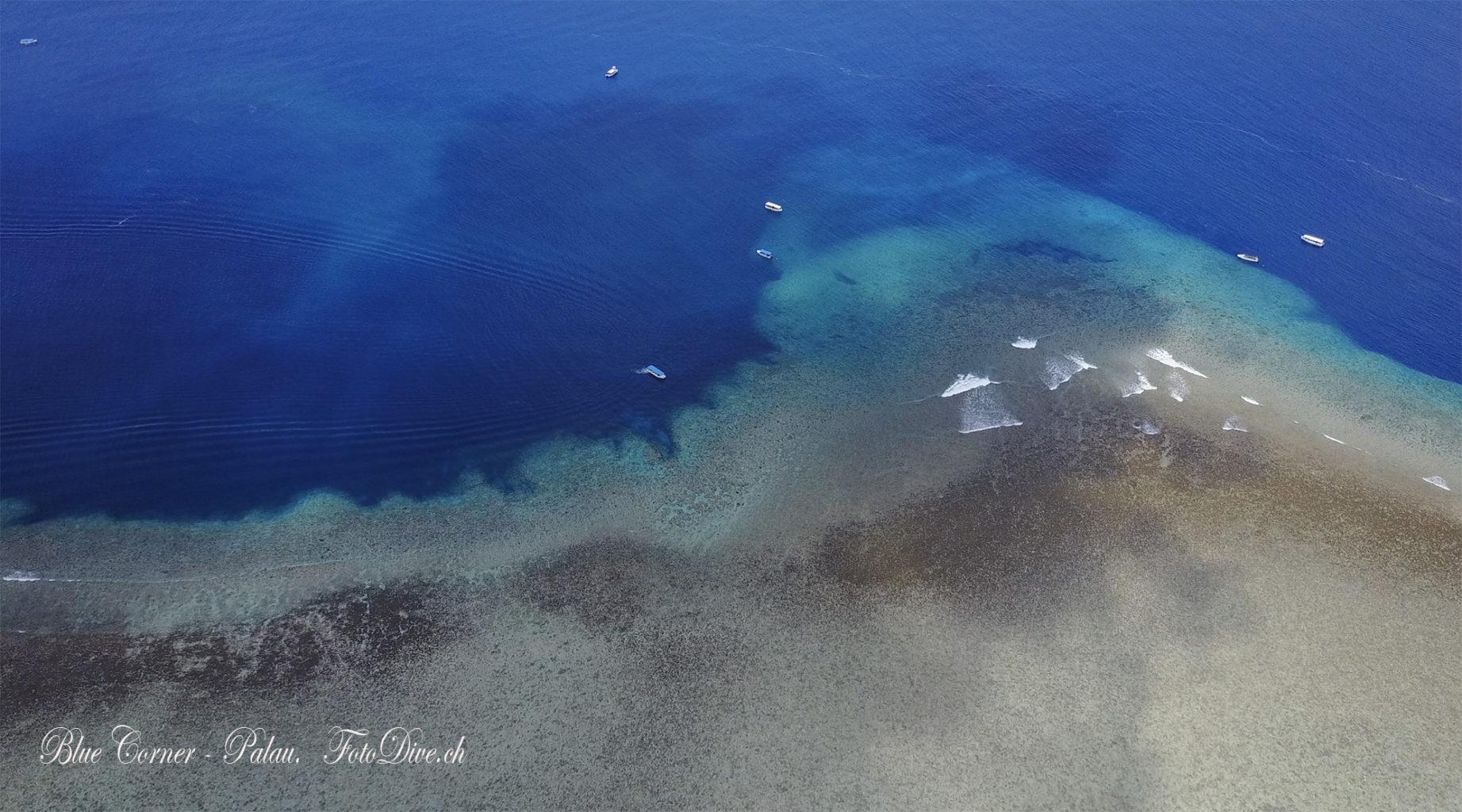 Blue Corner Drone Image Palau