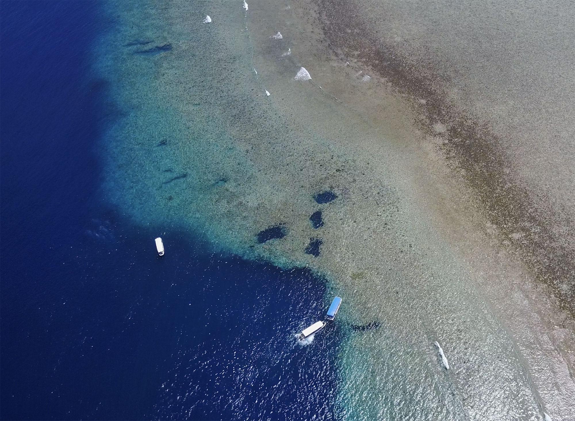 Blue Corner Drone Image Dive Site Palau