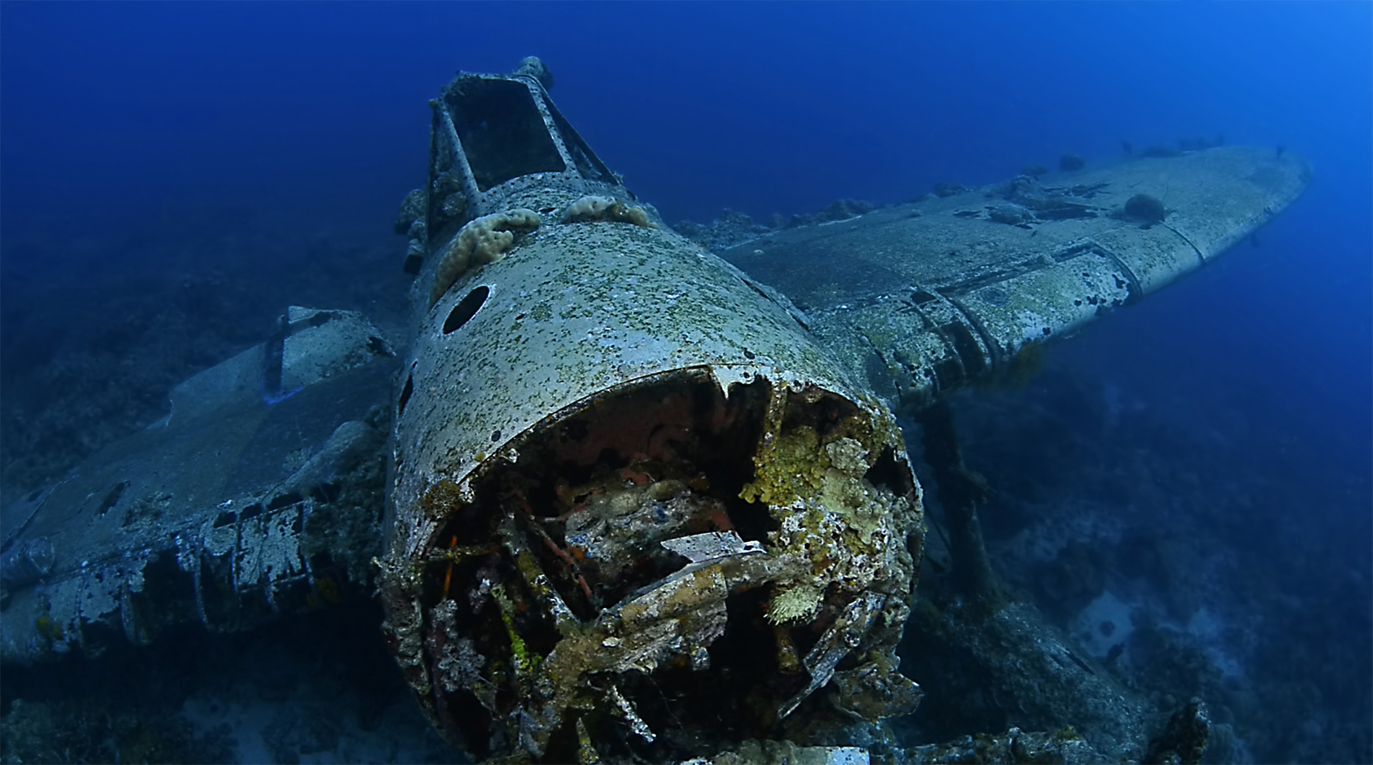 Jake`s Sea Plane, Japanese War Plane Wreck Palau
